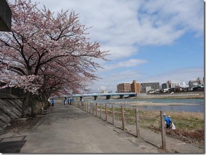 H26北上川清掃0005