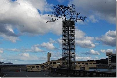 「奇跡の一本松」保存工事の様子