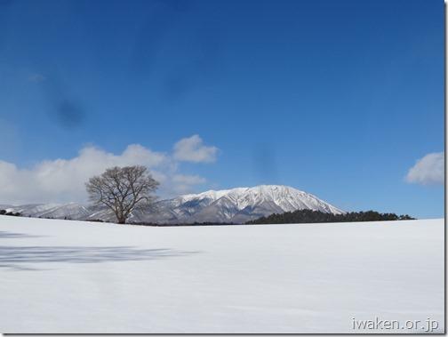 H28.2.7いわて雪まつり0001