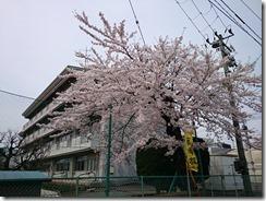 150419上田小学校