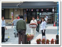 080710花のポケットパークつくり土風館 (11).JPG
