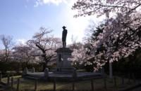 H21水沢公園花まつり.jpg