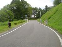 えぼし荘 野田村