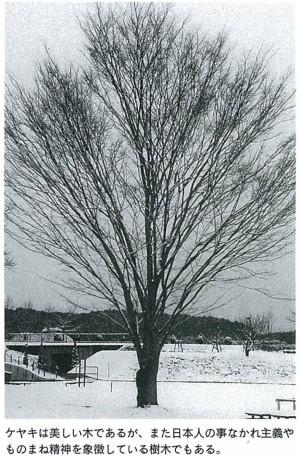 ケヤキは美しい木であるが、また日本人の事なかれ主義やものまね精神を象徴している樹木でもある。