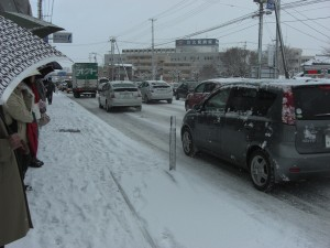 2009雪の朝.jpg
