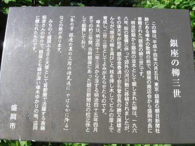 銀座の柳三世.jpg