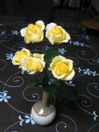 黄色の薔薇.JPG