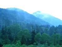 時雨の山.JPG