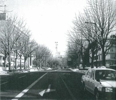 厳冬の冬、葉を落とした盛岡市内丸のトチノキの街路樹(2008年1月)