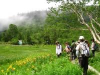 栂池自然園.JPG