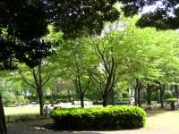 庭園美術館6.JPG