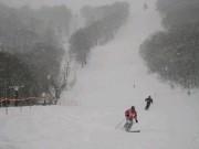 粉雪レッドゾーン.JPG